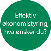 Effektiv økonomistyring, hva ønsker du?